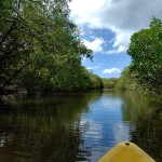 estuary-kayaking02