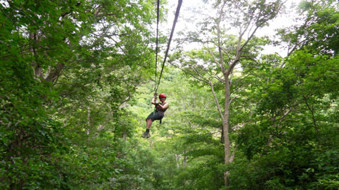 Canopy Tour And Rappelling